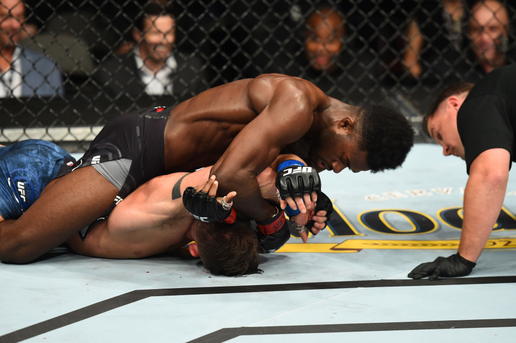DALLAS, TX - SEPTEMBER 08:  Aljamain Sterling (top) controls the body of Cody Stamann in their bantamweight fight during the UFC 228 event at American Airlines Center on September 8, 2018 in Dallas, Texas. (Photo by Josh Hedges/Zuffa LLC/Zuffa LLC via Getty Images)