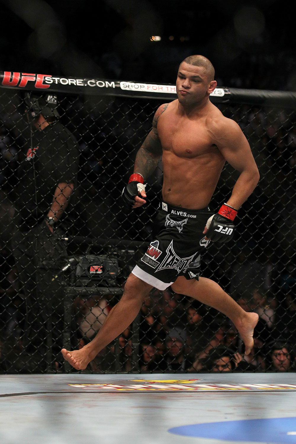 UFC 124: Alves celebrates his win.