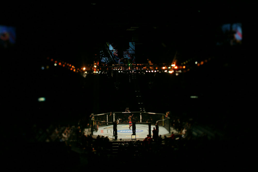 UFC 125: Roberts celebrates his victory over Soto.