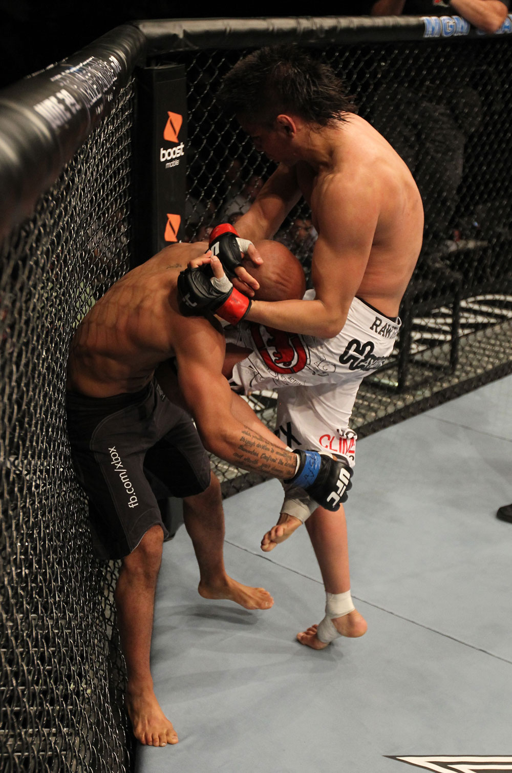 UFC 130: Torres vs. Johnson