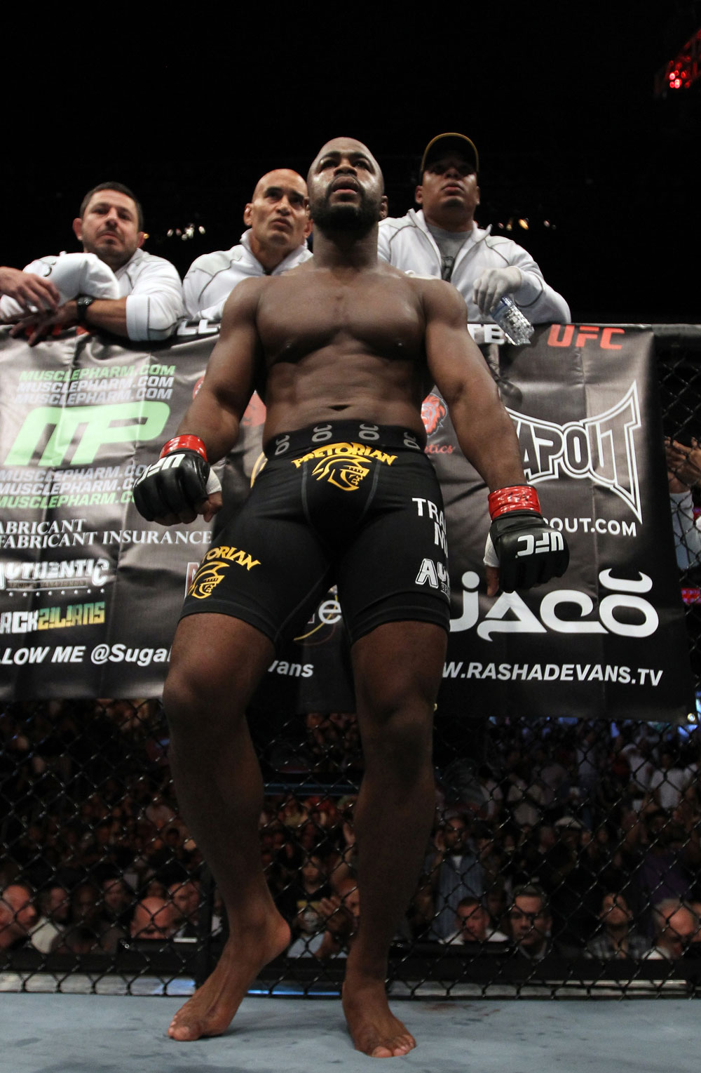 UFC 133: Rashad Evans