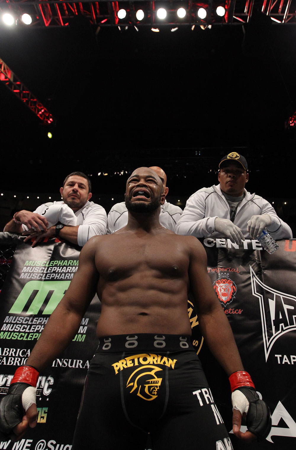 UFC 133: Rashad Evans