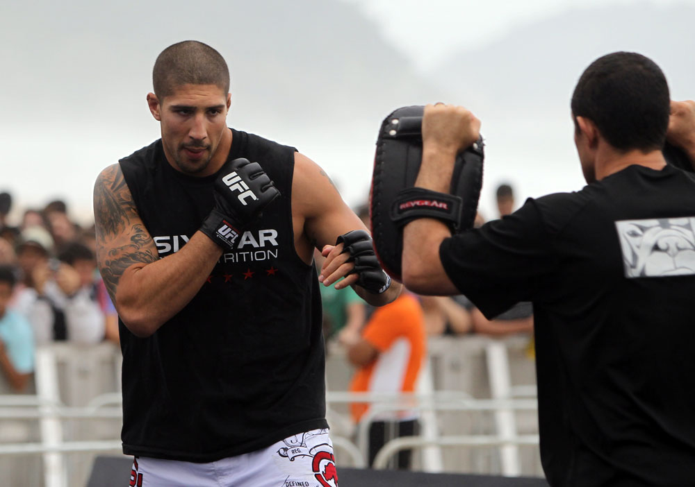 UFC heavyweight Brendan Schaub