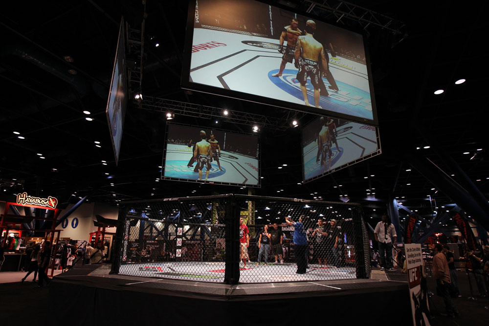 UFC fans take pictures inside the UFC Octagon