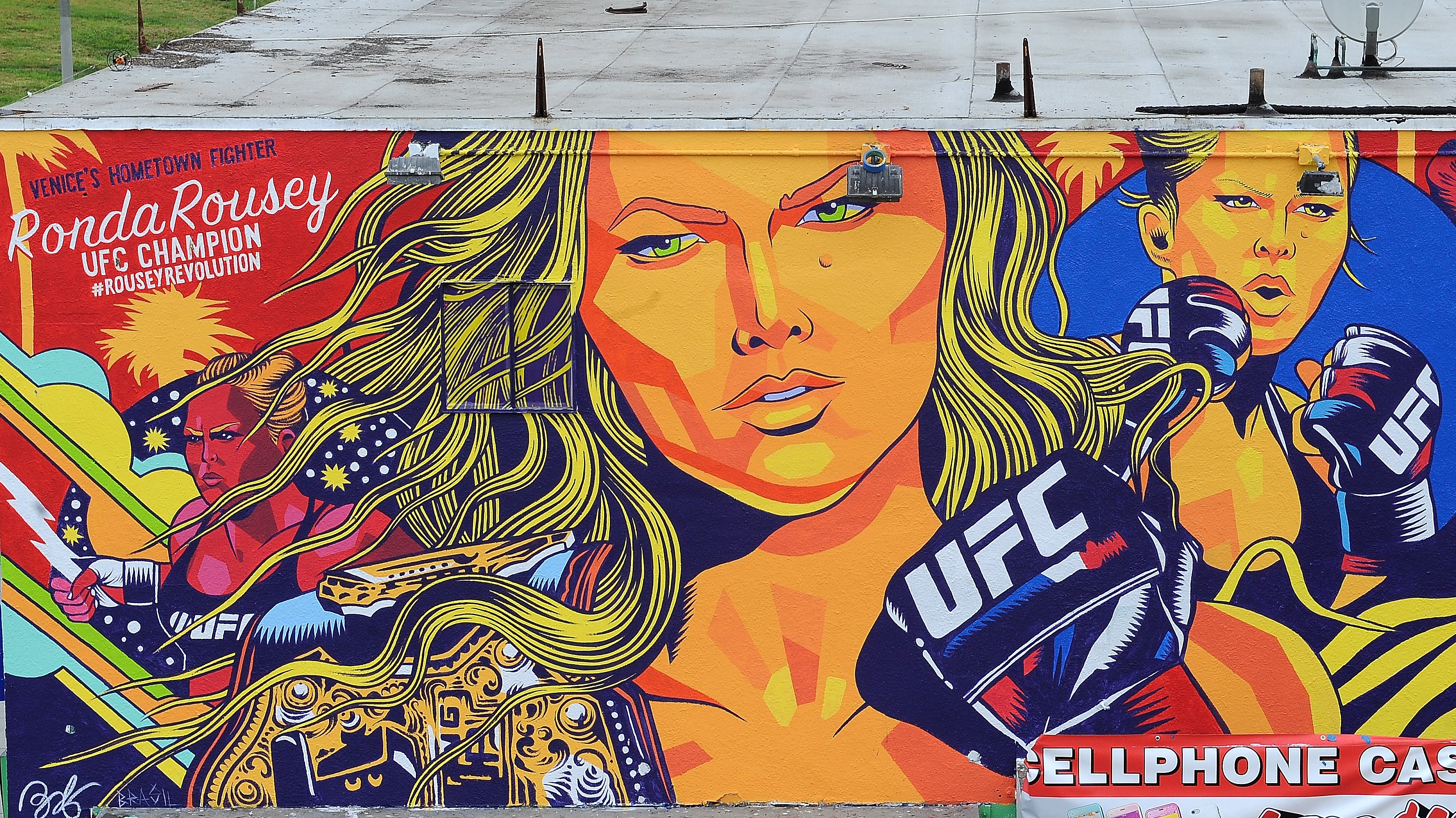A general view of a mural painted in honor of UFC women's bantamweight champion Ronda Rousey on October 16, 2015 in Venice, Calif. (Photo by Joshua Blanchard /Zuffa LLC/Zuffa LLC via Getty Images)