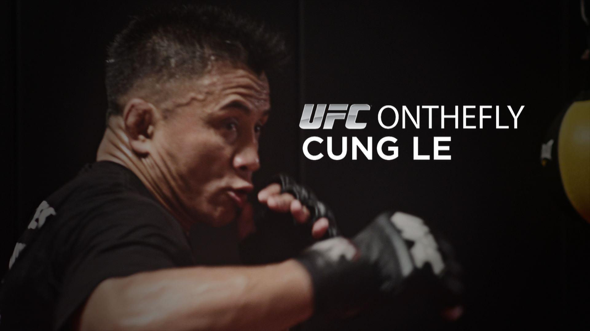 Ufc On The Fly Cung Le Ufc Media