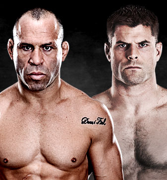 UFC on FUEL TV 8 - Silva vs. Stann