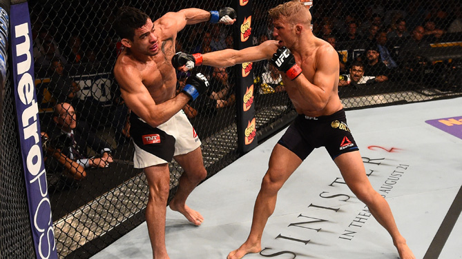 TJ Dillashaw punches Renan Barao of Brazil in their UFC bantamweight championship bout during the UFC event at the United Center on July 25, 2015 in Chicago, Illinois. (Photo by Jeff Bottari/Zuffa LLC)
