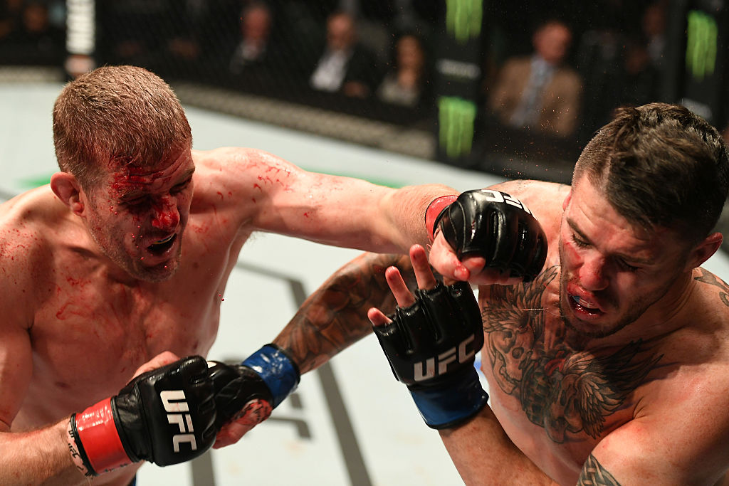 Kelly punches <a href='../fighter/Chris-Camozzi'>Chris Camozzi</a> during their fight in Melbourne, Australia last November