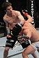 UFC 128: Benavidez vs. Loveland