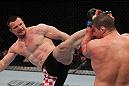 UFC 128: Cro Cop vs. Schaub