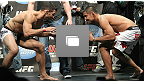 UFC&reg; 123: 