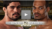 Luta preliminar do UFC® on Versus 3: Rousimar 'Toquinho' Palhares vs Dave Branch