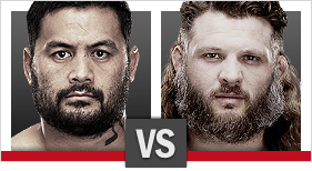 Mark Hunt vs. Roy Nelson