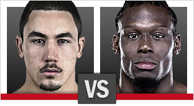 Robert Whittaker vs. Clint Hester