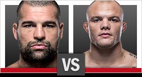 UFC Fight Night Shogun vs Smith
