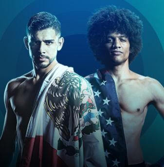 UFC Fight Night Rodriguez vs Caceres Live on Viaplay
