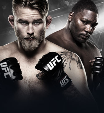 UFC Fight Night Gustafsson vs. Johnson no Combate