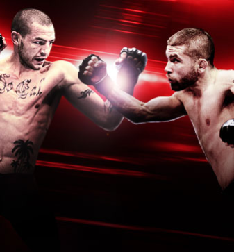 UFC Fight Night Swanson vs. Stephens Combate