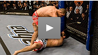 Michael Bisping vs Jason Day UFC® 85
