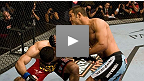 Dan Henderson vs Rousimar Palhares UFC&reg; 88