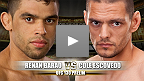 Luta preliminar do UFC® 130: Renan Barão vs. Cole Escovedo