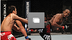 UFC® 140 Event Photo Gallery