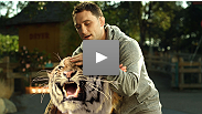 "See the worldwide premiere of the new UFC on FOX commercial featuring UFC champion Frankie ""The Answer"" Edgar taking on his toughest opponent yet – a tiger"