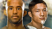 Joe Rogan breaks down the UFC 186 main event between two of the fastest men on the planet. UFC flyweight champion Demetrious Johnson and No. 1-contender Kyoji Horiguchi will meet in Montreal, Canada with the title on the line.