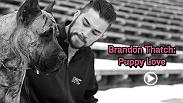 Brandon Thatch says he's a lover at heart. Get an insight into Thatch's personal life by getting to know his dogs and don't miss Thatch in the Octagon at UFC 196 when he takes on Siyar Bahadurzada.