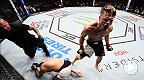 La minute UFC : Les combattants en pleine ascension