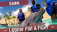 "Dana White and Matt Serra visit Cabo San Lucas, Mexico with Din Thomas. They check out a street fair, swim with dolphins, and taste tequila. Then they scout UFC prospects, including a cousin of the Pettis brothers, with Donald ""Cowboy"" Cerrone."
