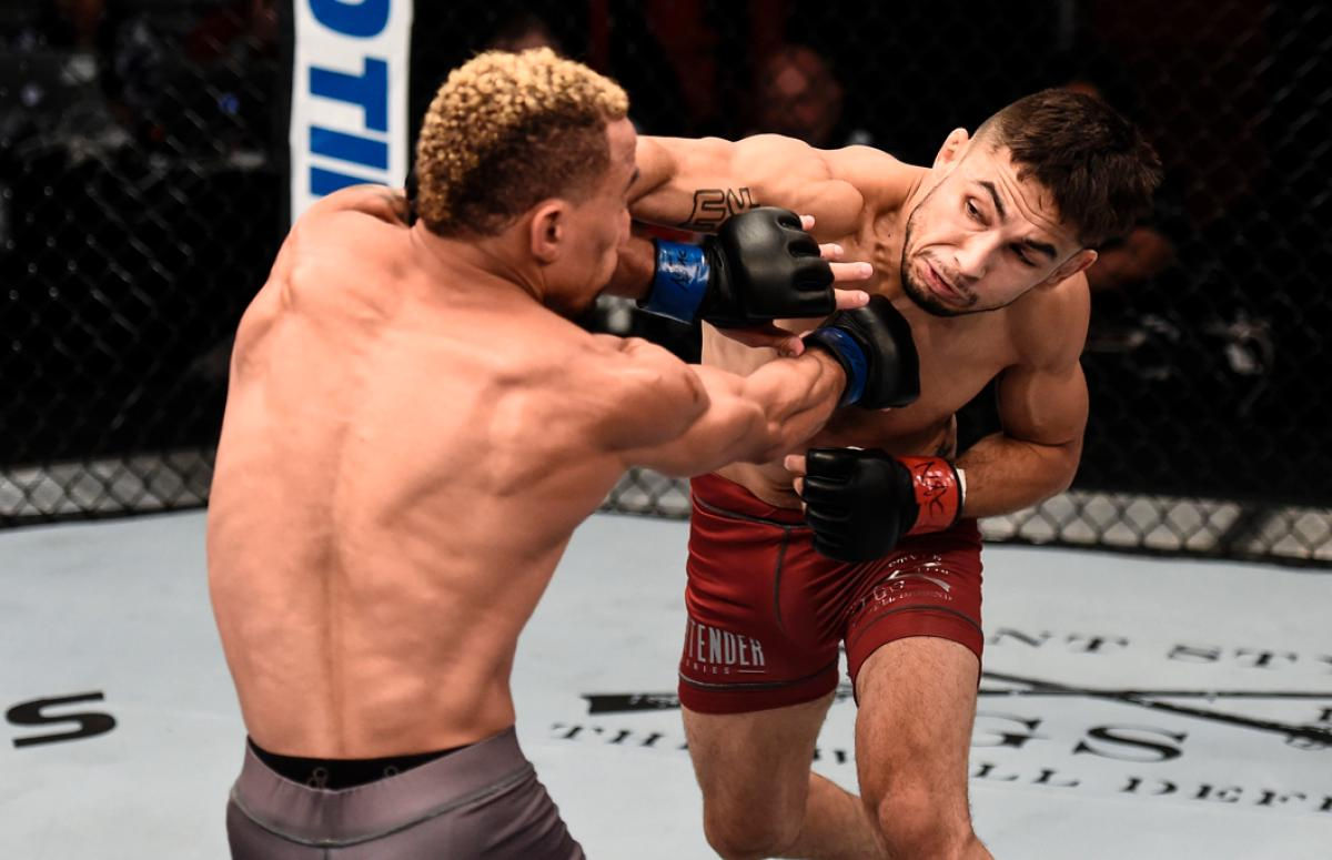 UFC 228 results