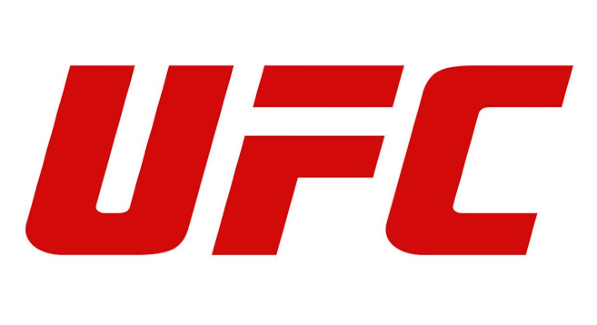 Fan Experience cancelled at UFC 228