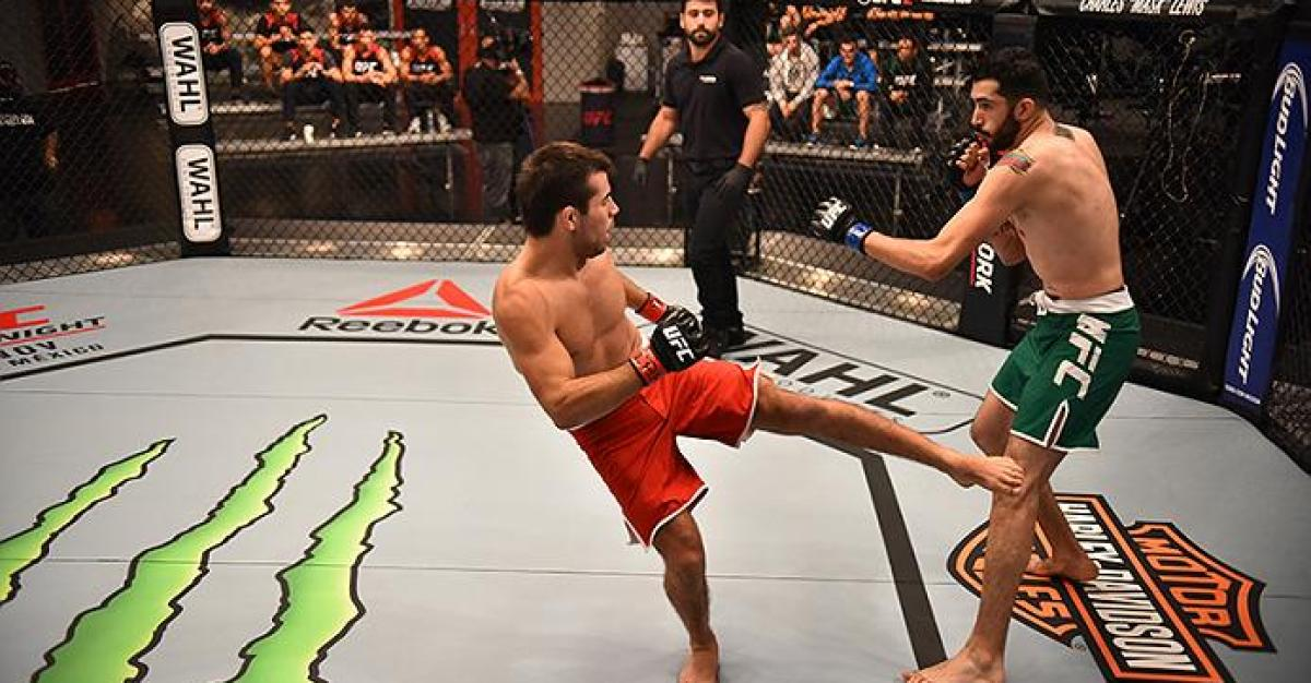 ultimate fighting championship essay Ultimate fighting championship or (ufc) is the main sports event held numerous times a year, pitting world-class mma this would be not a big task since both the presidents of their respective championships want to arrange a fight between their fighting championships to prove their mettle.