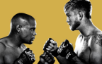 UFC 192: By The Numbers