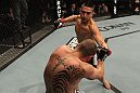 Ricardo Lamas vs Matt Grice