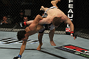 Charles Oliveira vs Nik Lentz