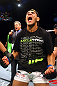 Rafael Dos Anjos celebrates after knocking out George Sotiropoulos.