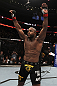 UFC 133: Rashad Evans celebrates his win.