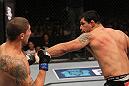 Minotauro Nogueira vs Brendan Schaub