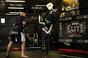 Cheick Kongo