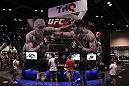 THQ booth featuring UFC Undisputed 3 demo