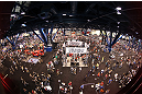 UFC fans attend the UFC Fan Expo
