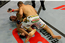 Junior dos Santos vs Cain Velasquez