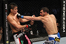 SAN JOSE, CA - NOVEMBER 19: (R-L) Nick Pace punches Miguel Torres during an UFC Bantamweight bout at the HP Pavillion in San Jose, California on November 19, 2011 in San Jose, California.  (Photo by Josh Hedges/Zuffa LLC/Zuffa LLC via Getty Images)
