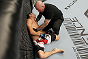 SAN JOSE, CA - NOVEMBER 19:  Referee Josh Rosenthal tends to Alex Soto after stopping a UFC Bantamweight bout between Michael McDonald and Soto fifty-six seconds into the first round at the HP Pavillion on November 19, 2011 in San Jose, California.  (Photo by Josh Hedges/Zuffa LLC/Zuffa LLC via Getty Images)