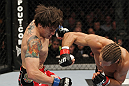 SAN JOSE, CA - NOVEMBER 19: (L-R) Brian Bowles takes a punch from Urijah Faber during an UFC Bantamweight bout at the HP Pavilion on November 19, 2011 in San Jose, California. (Photo by Josh Hedges/Zuffa LLC/Zuffa LLC via Getty Images)