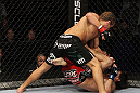 SAN JOSE, CA - NOVEMBER 19: Urijah Faber (top) punches Brian Bowles (bottom) during an UFC Bantamweight bout at the HP Pavillion on November 19, 2011 in San Jose, California.  (Photo by Josh Hedges/Zuffa LLC/Zuffa LLC via Getty Images)