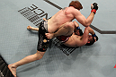 TORONTO, ON - DECEMBER 10:  (L-R) Mark Bocek punches Nik Lentz during the UFC 140 event at Air Canada Centre on December 10, 2011 in Toronto, Ontario, Canada.  (Photo by Nick Laham/Zuffa LLC/Zuffa LLC via Getty Images)